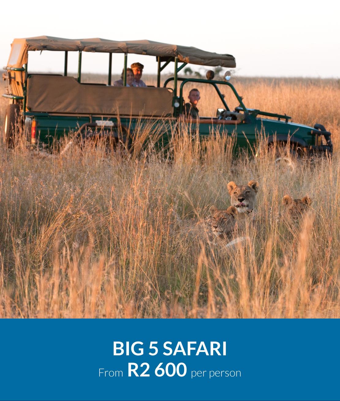 mouille-point-village-safari